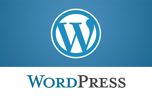 budowa-strony-internetowej-cms-wordpress